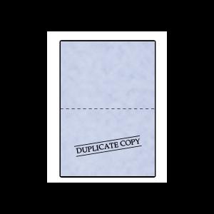 duplicate-copy